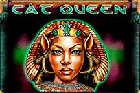 В онлайн клубе Кошка-царица